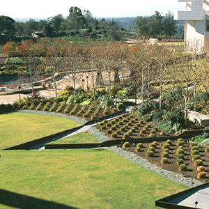 The View from Above: Garden Overlook