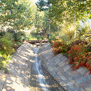 Orchestrated Color: Lower Stream Garden